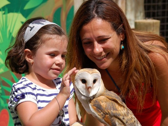 Interaction avec des animaux magic natura animal, waterpark resort benidorm